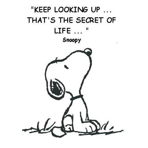 Snoopy-Keep-looking-up-thats-the-secret-of-life